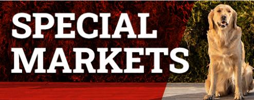 Ново от Winbet: Специални пазари за европейското първенство